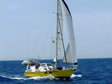 AYC - DALU 40 / Under sails
