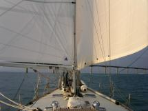 AYC ISLANDER 55 - Under sails 2