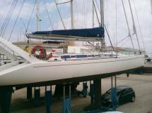 AYC - Akela 50