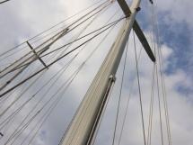 AYC - Jeroboam / Mast