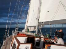 CCYD 75' - Under sails