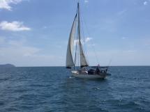 Via 52 - Under sails