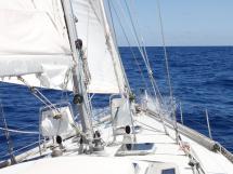 OVNI 56 - Under sails