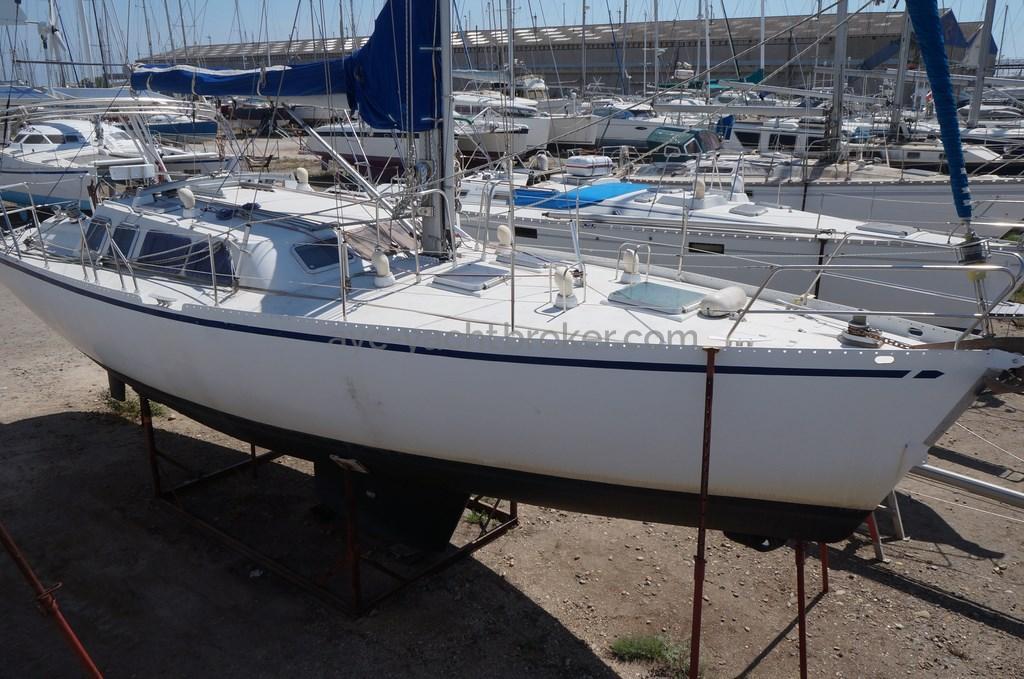 AYC - Atlantis 430